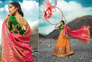 Sudarshan Family Store Wedding and Festival collention kesari Vogue-13618  Semi Stitiched Lehenga with Unstitiched choli